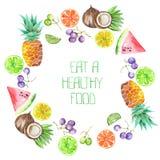 En fruktcirkelram av vattenfärgen bär frukt: druvor, ananas, kokosnöt, citron, limefrukt, citrus och annan royaltyfri illustrationer