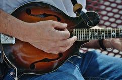 En musiker som leker en mandolin. Arkivfoton