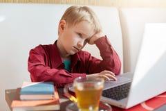 En fundersam liitlepojke med blont hår som bär rött se för skjorta, borrade in i skärmen av hans dator som dricker te, medan göra Royaltyfri Foto