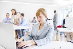 En funktionsduglig affärskvinna framme av hennes bärbar dator Arkivbild