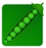 En fyrkantiga Pea Pod Fotografering för Bildbyråer