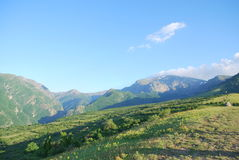 En gå i bergen i sommar Fotografering för Bildbyråer