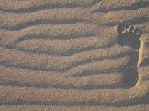 En gå i sanden Arkivfoto