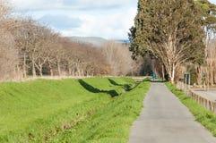 En gångbana till och med en parkera i Palmerston norr Nya Zeeland royaltyfria foton