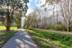 En gångbana till och med en parkera i Palmerston norr Nya Zeeland arkivfoton