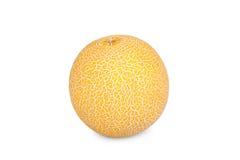 En Galia Melon Fotografering för Bildbyråer
