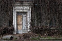 En gammal övergiven orangeri Fotografering för Bildbyråer