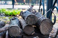 En gammal bunt av vedträ i trädgården Bekläda beskådar Fotografering för Bildbyråer