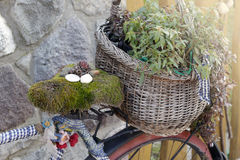 En gammal cykel med en korg av blommor Royaltyfri Foto