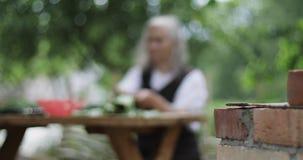 En gammal kvinna med grått hår sitter på en tabell i trädgården och rymmer en tomat och en gurka i henne händer arkivfilmer