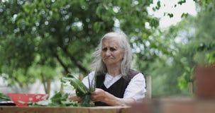 En gammal kvinna sitter på en trätabell i trädgården och rymmer en lök och en dill i henne händer arkivfilmer