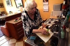 En gammal kvinna tvättar disken royaltyfri bild