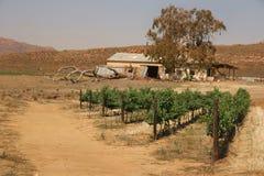 En gammal ladugård och en liten vingård någonstans i Sydafrika Arkivbild