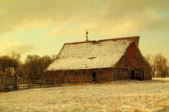 En gammal ladugård som fortlevde en annan vinter i North Dakota Royaltyfri Bild