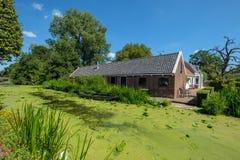 En gammal lantgård längs en kanal med massor av andmat i Maasland, royaltyfria foton