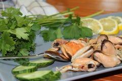 En gammal maträtt med musslor som skivar gurkor Royaltyfria Bilder
