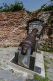 En gammal rostig kanon Arkivfoton