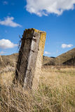 En gammal staketstolpe i högväxt gräs Royaltyfri Fotografi