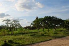 En gammal stupa med den gröna fältbakgrunden i gamla Bagan, Myanmar Arkivfoton