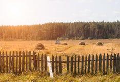 En gammal traktor plogar ett fält i en by, höstackar och en gammal staketställning på fältet, finns det en skog på horisonten royaltyfri fotografi