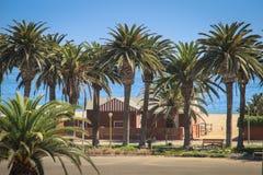 en gammal tysk byggnad som omges av palmträd arkivbild