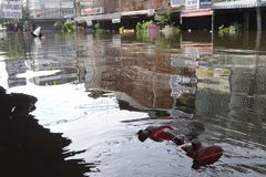 En gata översvämmas i Rangsit, Thailand, i Oktober 2011 Royaltyfri Foto
