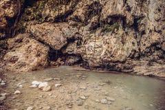 En Gedi Израиль водопада Дэвида Стоковая Фотография