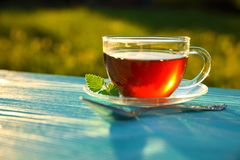 En genomskinlig kopp te för exponeringsglas med ett mintkaramellblad royaltyfri foto
