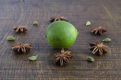 En geometrisk modell av ayurvedic ingredienser Fotografering för Bildbyråer