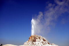 En geyserskytteånga in i luften Arkivbild