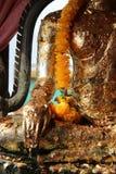 En girland av blommor dekorerar en staty av Buddha (Thailand) arkivfoton
