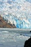 En glaciär som skriver in havet i Tracy Arm Fjord arkivbild