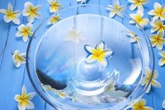 Spablommor bevattnar bunkebehandling royaltyfria foton
