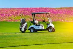 En golfvagn som parkerar på grönt gräs i golflek fotografering för bildbyråer