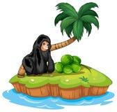 En gorilla i ön Royaltyfri Foto