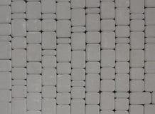 En grå tegelplatta på en trottoar Royaltyfria Foton