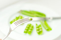 En grön ärta på gaffel arkivfoto