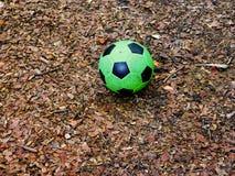 En grön fotbollboll på golvet Royaltyfria Bilder