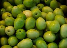 En grön jujubefrukt Arkivbild