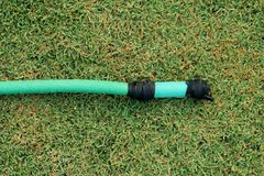 En grön slang som ligger på den gräs- jordningen, ett slut upp bilden av en trädgårdslang, gummirör för att bevattna växter i trä royaltyfria foton