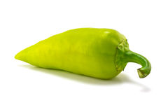 En grön spansk peppar Arkivbild