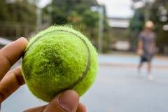 En grön tennisboll på ett sunnyday fotografering för bildbyråer