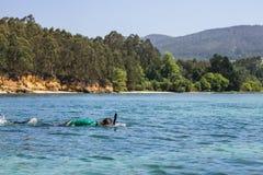 En grabbdykning i klart vatten Royaltyfri Fotografi