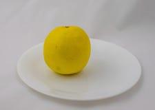 En grapefrukt på en platta Arkivfoto
