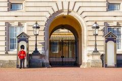En grenadjär Guard tjänstgörande och två vaktpostaskar utanför Buckingham Palace i London royaltyfri bild