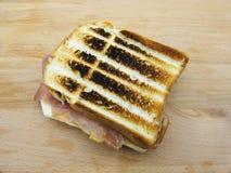 En grillad skinka och ostsmörgås på träbakgrund royaltyfria foton