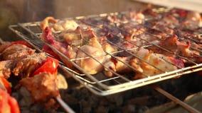 En grillant la viande et le poulet sur le barbecue grillez - plein HD visuel 1080 banque de vidéos