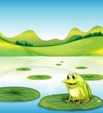 En groda ovanför vattnet lilly vektor illustrationer