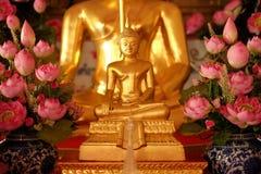 Or en gros plan Bouddha avec la partie latérale rose de lotus Images stock