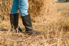 En gros plan des pieds du ` s d'agriculteur dans des blues-jean et des bottes dans un domaine avec le foin incliné images stock